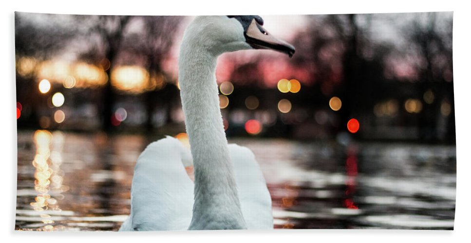 Swan Bath Sheet featuring the photograph Swan Lake Night 2 by Steven Jones