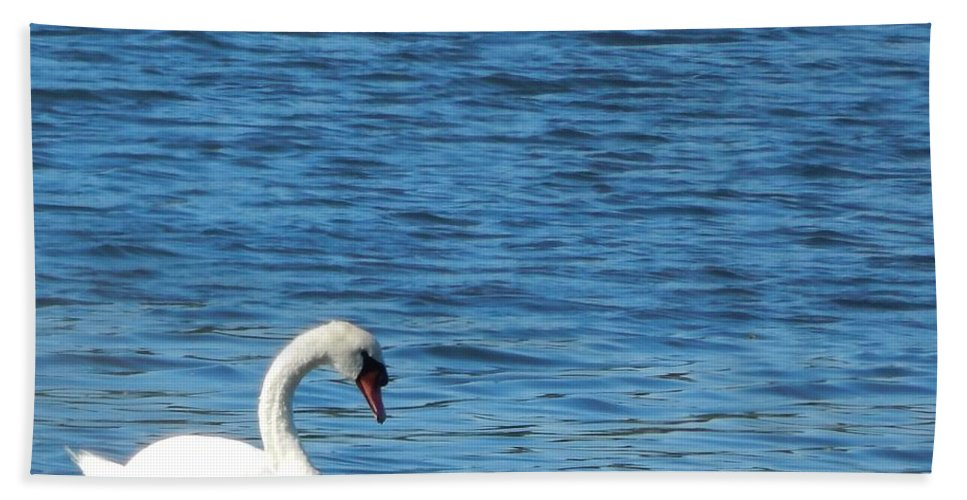 Swan Hand Towel featuring the photograph Swan by Lisa Cassinari