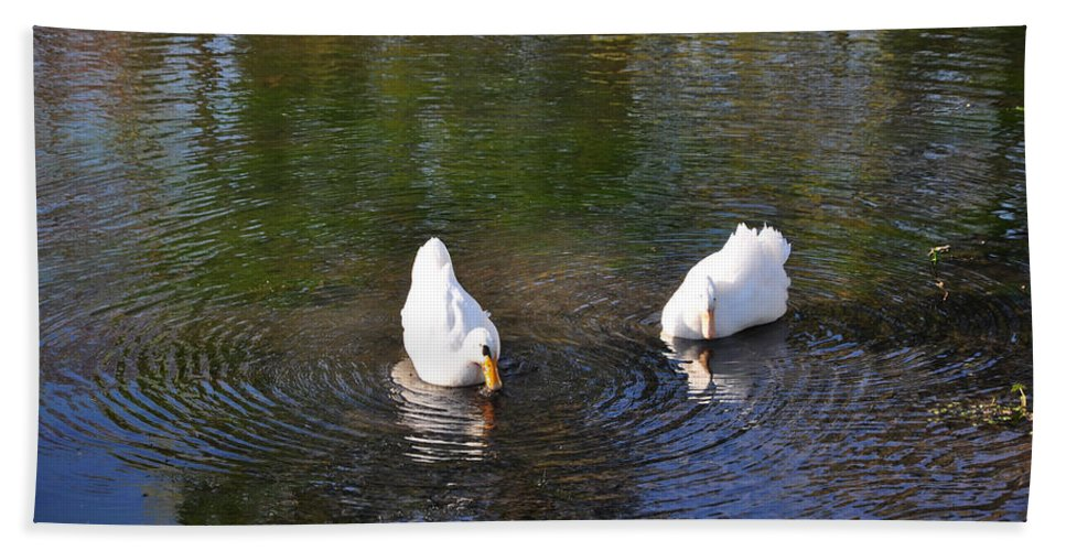 Swan Hand Towel featuring the pyrography Swan Ripplle by Terry Anderson