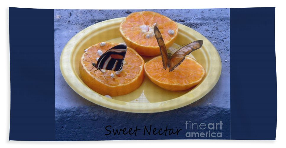 Sweet Nectar Bath Sheet featuring the photograph Sweet Nectar by Barbara Griffin
