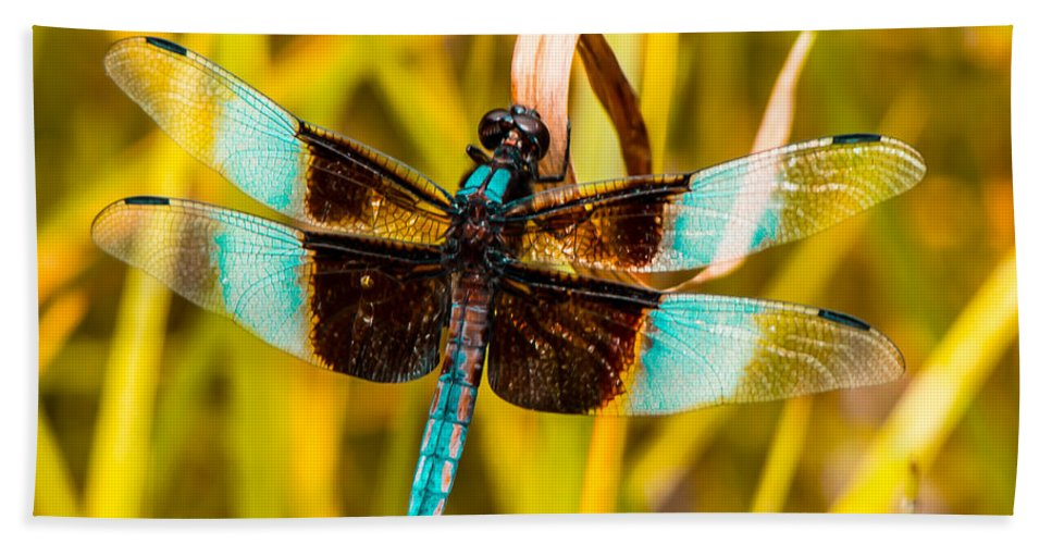 Dragonfly Hand Towel featuring the photograph Sweet Surrender by Kristin Hunt