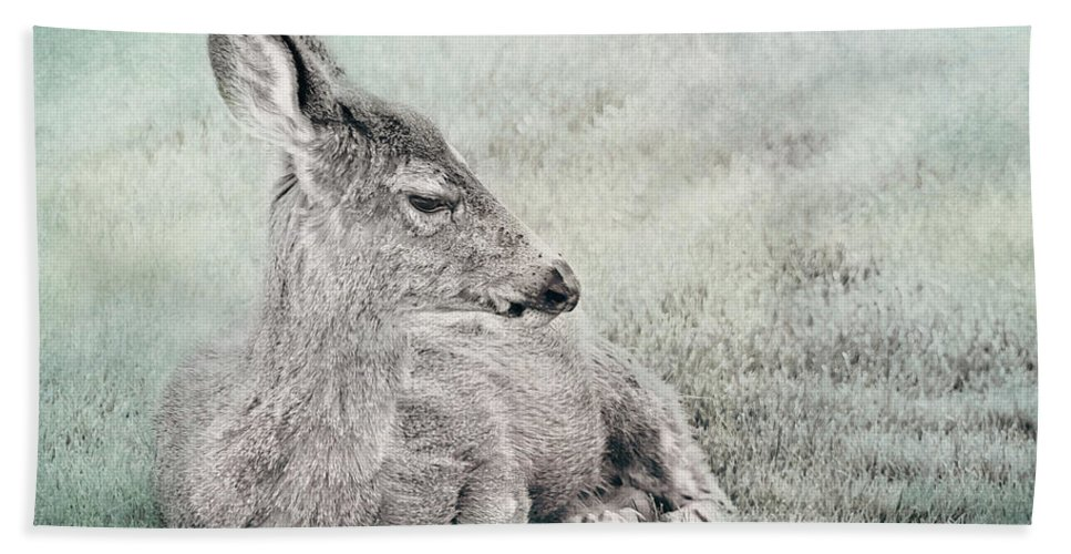 Deer Hand Towel featuring the photograph Sweet Young Deer by Belinda Greb