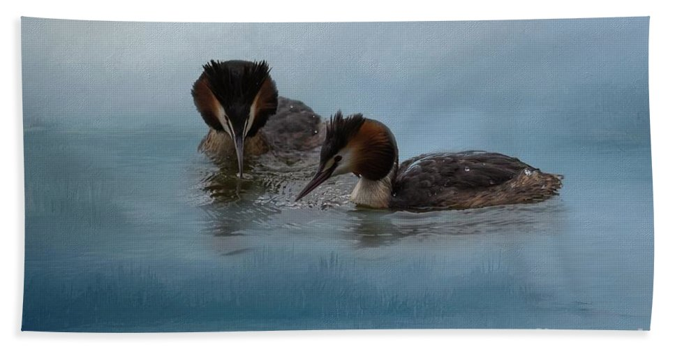 Great Crested Grebes Bath Sheet featuring the photograph Swimmers by Eva Lechner