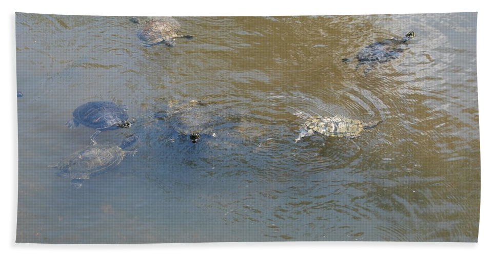 Water Hand Towel featuring the photograph Swimming Turtles by Rob Hans