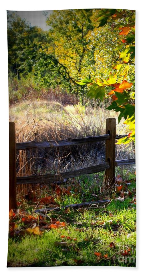 Fence Hand Towel featuring the photograph Sycamore Grove Fence 1 by Carol Groenen
