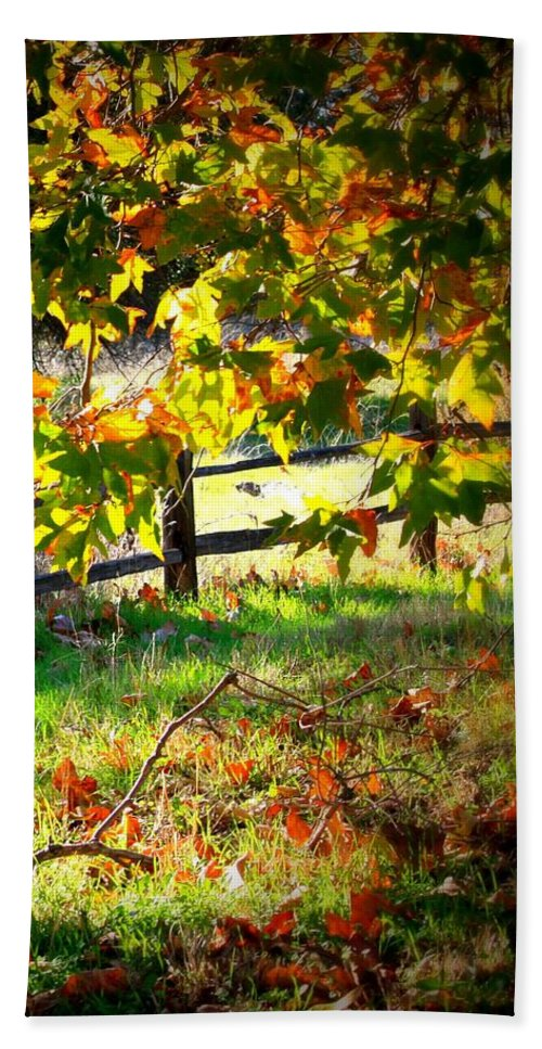 Fence Hand Towel featuring the photograph Sycamore Grove Fence 2 by Carol Groenen