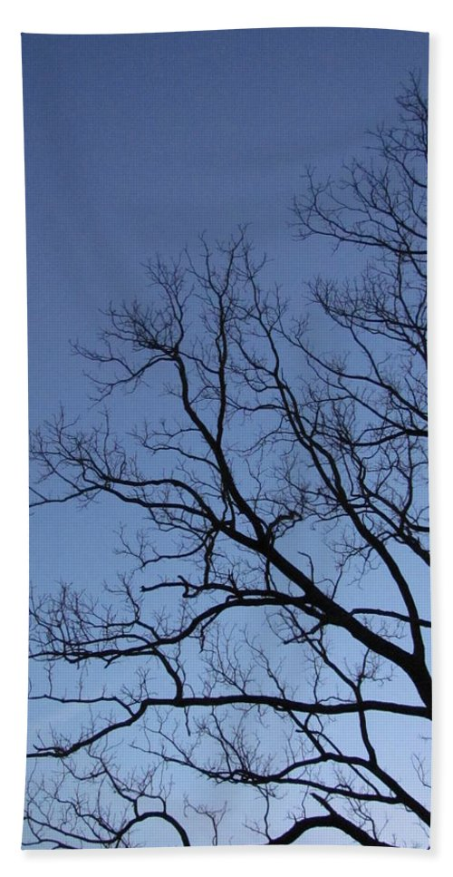 Winter Blue Sky Tree Silhouette Photograph Skyscape Canvas Prints Contrast Sycamore Silhouette Arbor Sky Clear Sky Clear Day Hand Towel featuring the photograph Sycamore Silhouette by Joshua Bales