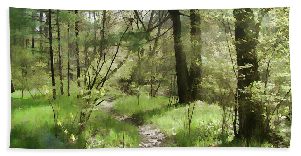 Woods Bath Sheet featuring the photograph Sylvan Joy by Betsy Zimmerli