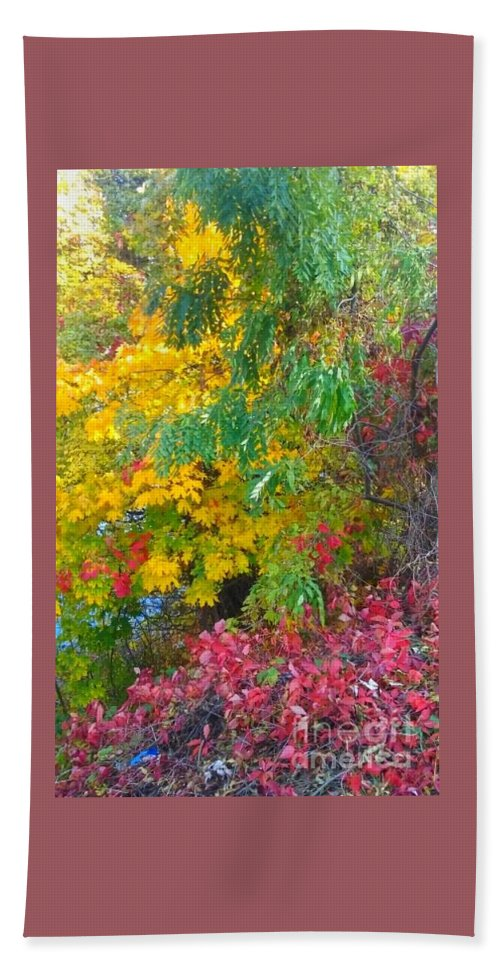 Canvas Hand Towel featuring the photograph Synergistic Horizons by Alexandra Felecan