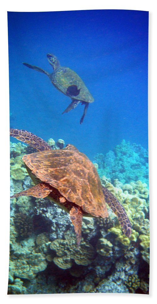 Sea Turtles Hand Towel featuring the photograph Tag You're It by Angie Hamlin