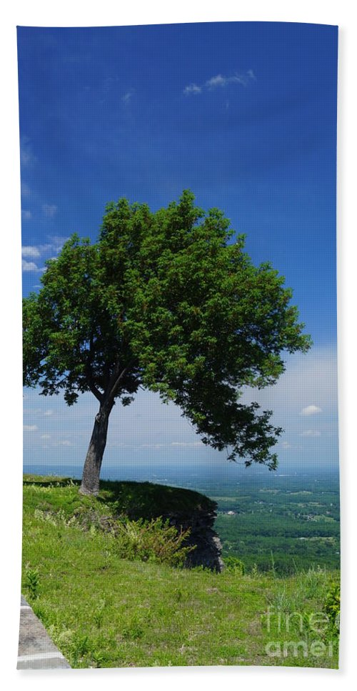 Trees Hand Towel featuring the photograph Taking Piont by Jeffery L Bowers