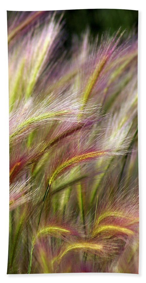 Plants Bath Towel featuring the photograph Tall Grass by Marty Koch