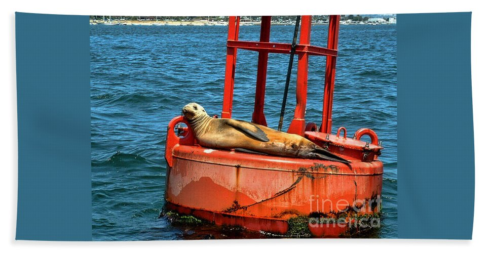 Tanning Sea Lion On Buoy Hand Towel featuring the photograph Tanning Sea Lion On Buoy by Mariola Bitner