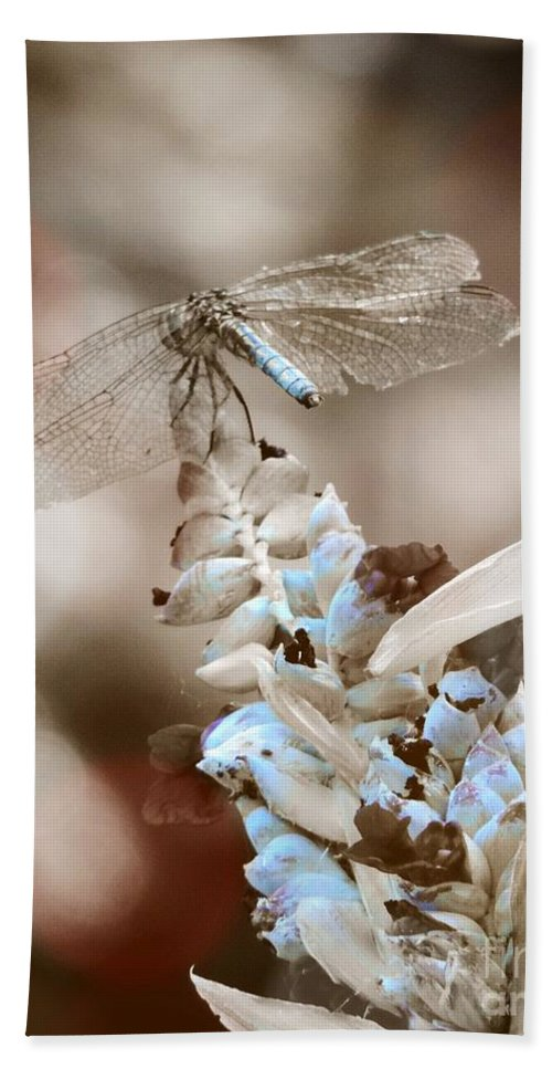 Dragonfly Hand Towel featuring the photograph Tattered Wings B1 by Robert ONeil
