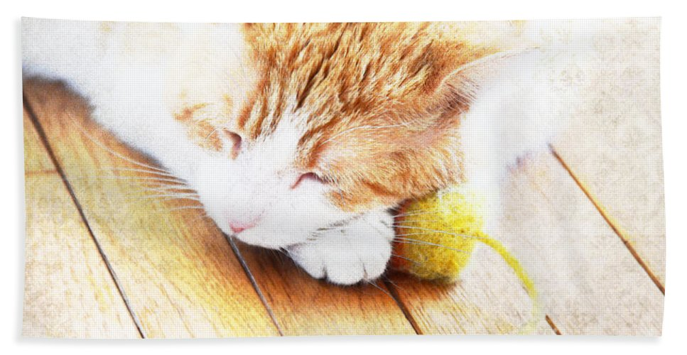 Cat Hand Towel featuring the photograph Teddy And His Toy by Elaine Berger