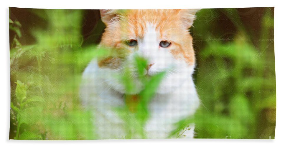Cat Bath Sheet featuring the photograph Teddy In The Garden by Elaine Berger