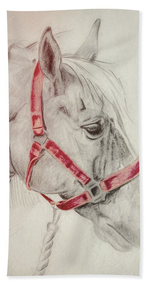 Horse Bath Sheet featuring the photograph Tequila Sketch by JAMART Photography