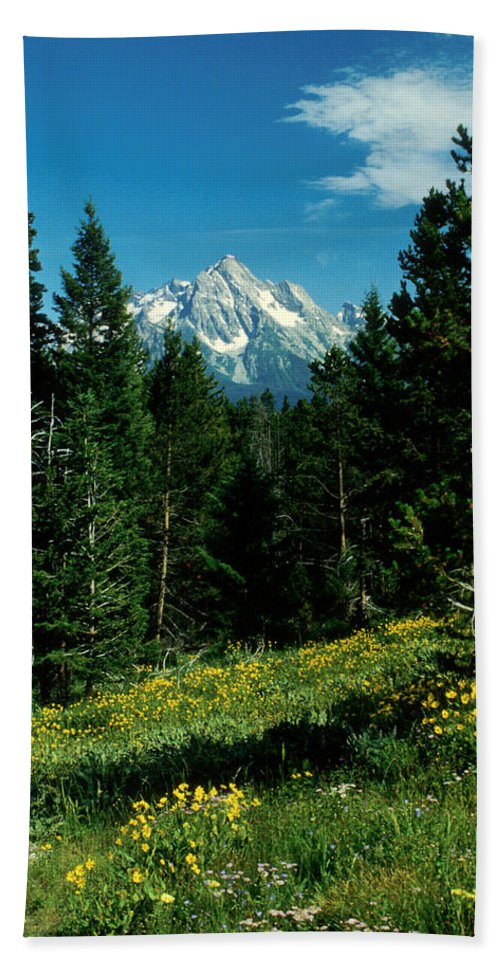 Wyoming Bath Sheet featuring the photograph Teton Meadow by Jerry McElroy