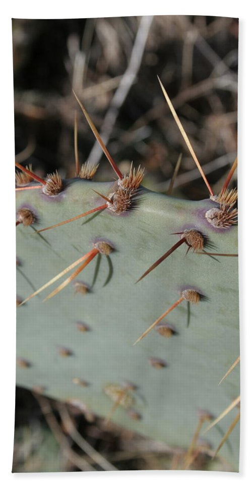 Spike Hand Towel featuring the photograph Texas Spikes by Laddie Halupa