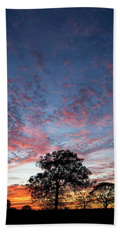Tree Hand Towel featuring the photograph Texas Sunset by Skip Hunt