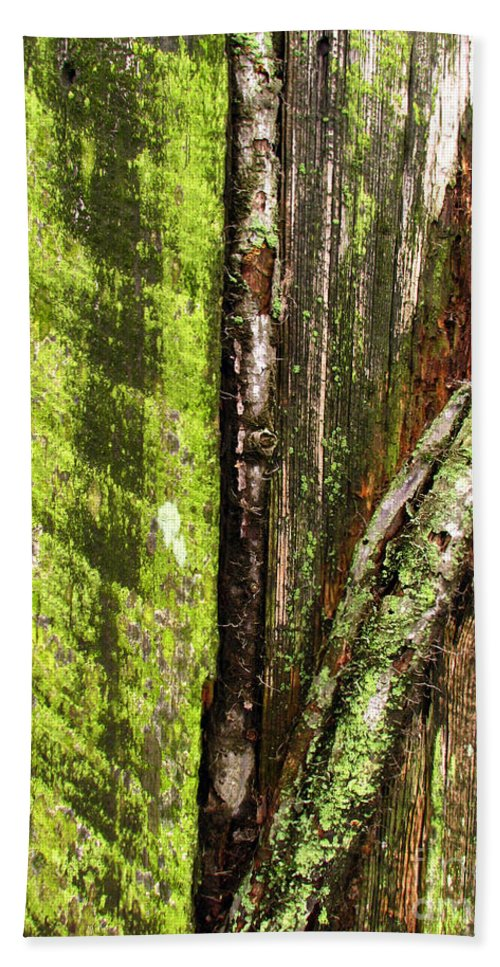 Texture Bath Towel featuring the photograph Texture Series by Amanda Barcon