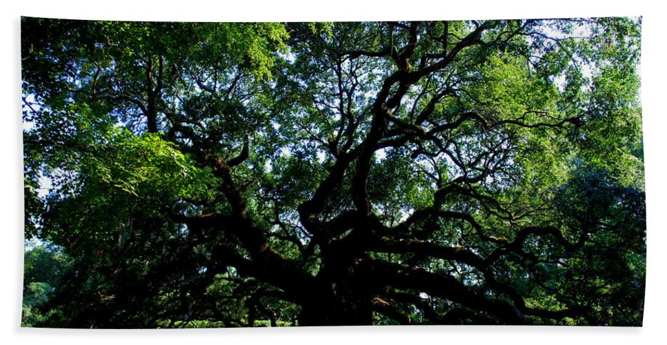 Angel Oak Bath Sheet featuring the photograph The Angel Oak In Summer by Susanne Van Hulst