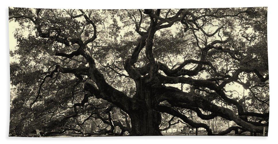 Angel Oak Hand Towel featuring the photograph The Angel Oak by Susanne Van Hulst