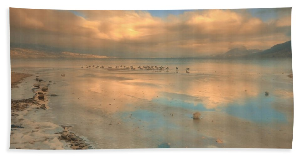 Birds Hand Towel featuring the photograph The Birds And The Ice by Tara Turner