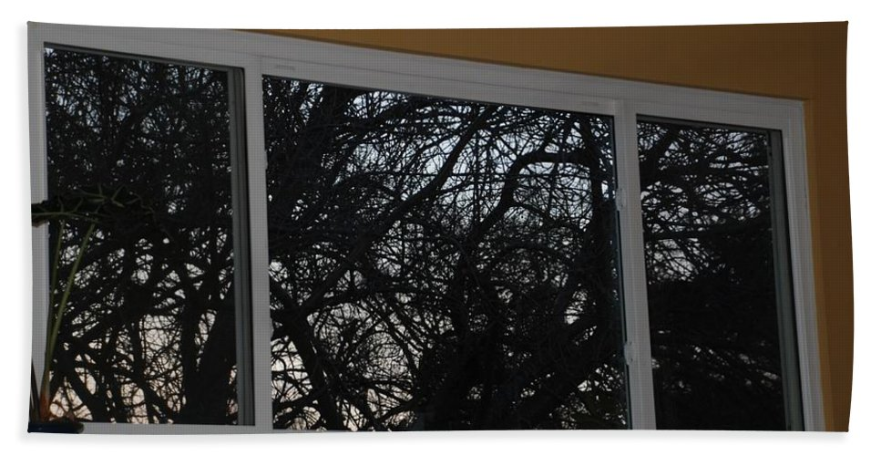 Window Bath Towel featuring the photograph The Branch Window by Rob Hans