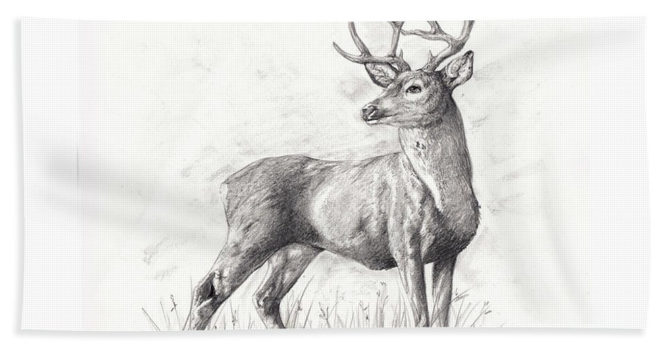 Nature Hand Towel featuring the drawing The Buck by Emma Olsen