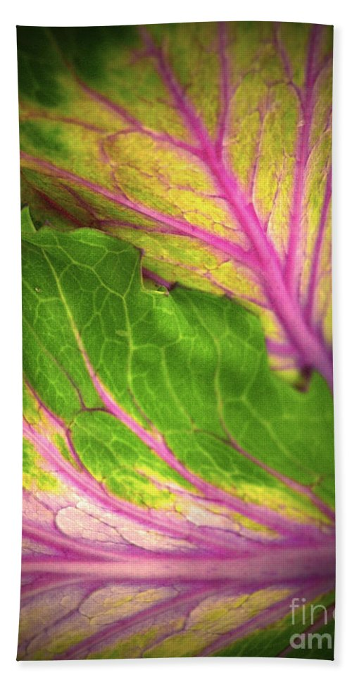 Leaves Hand Towel featuring the photograph The Caress by Tara Turner