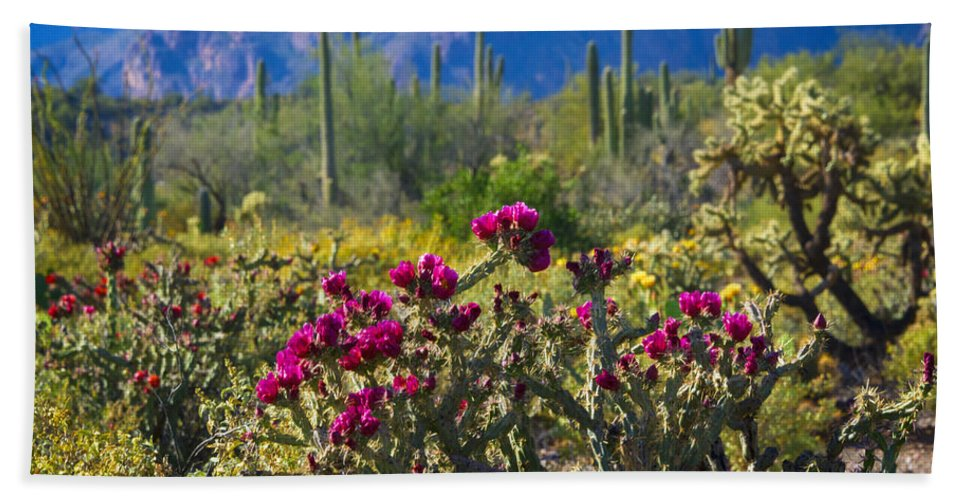 Cholla Cactus Bath Towel featuring the photograph The Colorful Desert by Saija Lehtonen