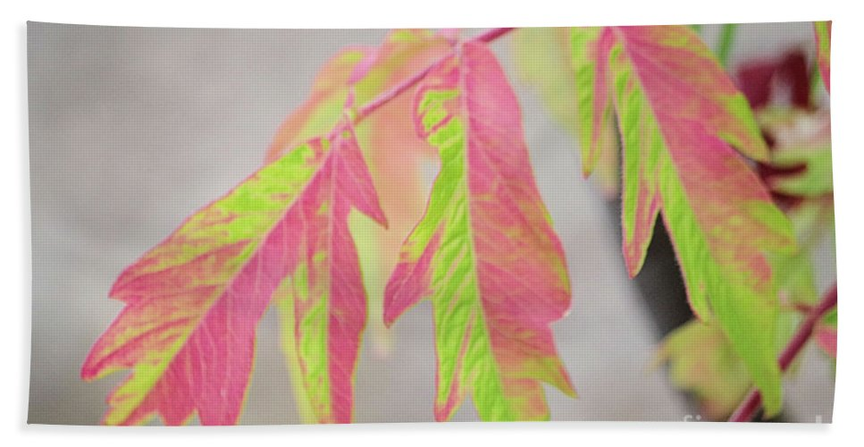 Shumac Hand Towel featuring the photograph The Colors Of Shumac 2 by Victor K