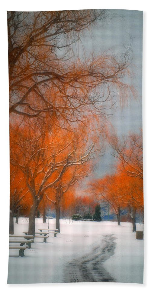 Summerland Hand Towel featuring the photograph The Colours Of Winter by Tara Turner