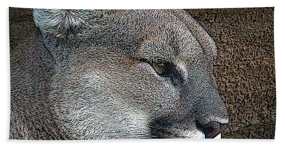 Mountain Lion Bath Sheet featuring the photograph The Cougar by Ernie Echols