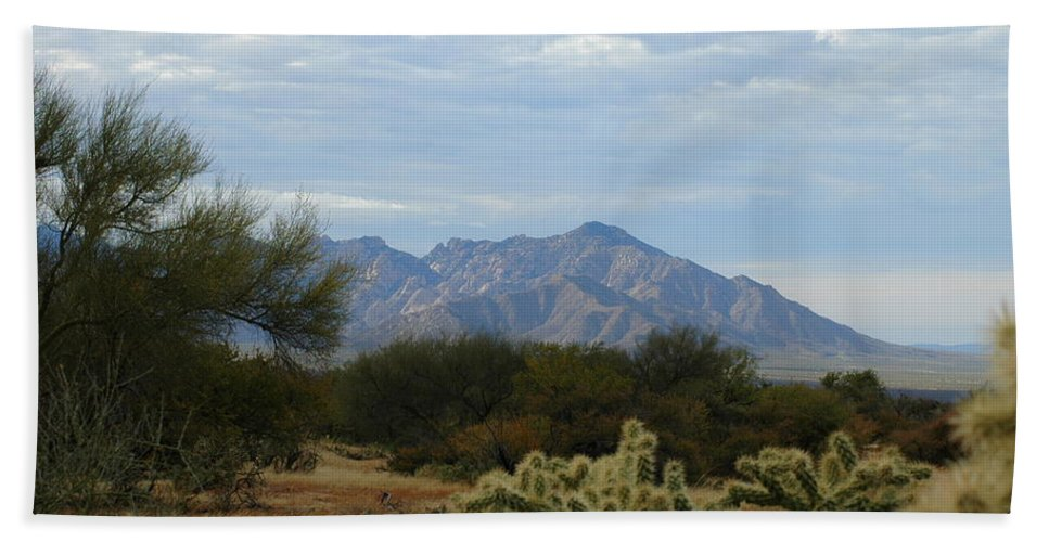 Tucson Hand Towel featuring the photograph The Desert Landscape by Teresa Stallings