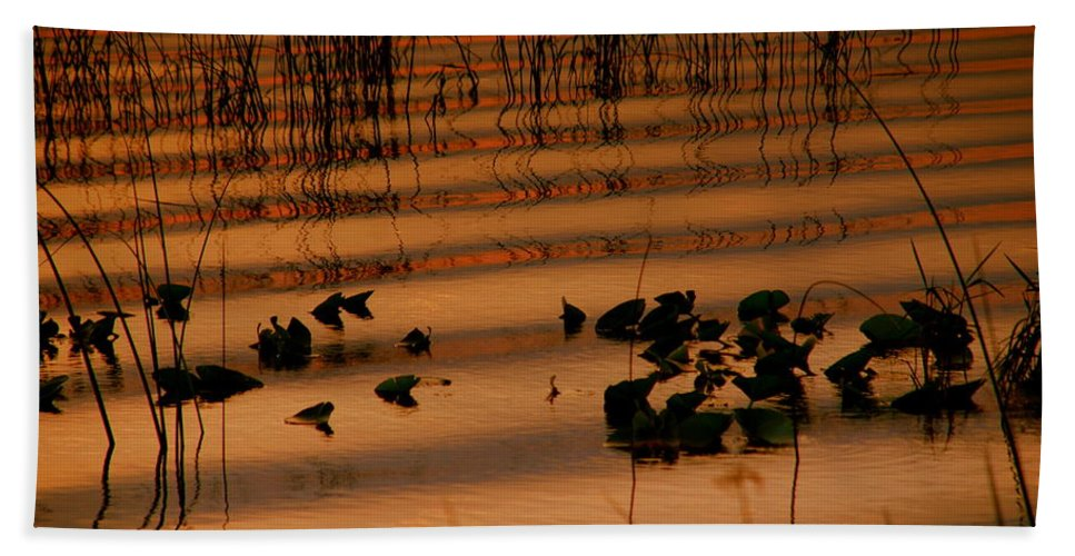 Zen Bath Sheet featuring the photograph The Difference by Susanne Van Hulst