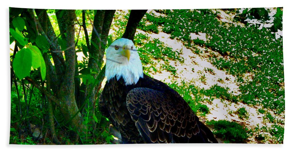 Eagle Hand Towel featuring the photograph The Eagle Has Landed by Bill Cannon