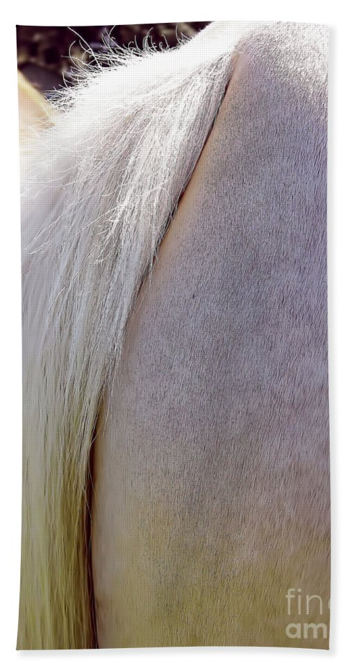 Horse Hand Towel featuring the photograph The End by D Hackett