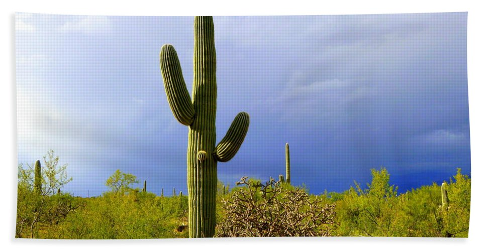 Tucson Bath Sheet featuring the photograph The End Of The Storm by Teresa Stallings