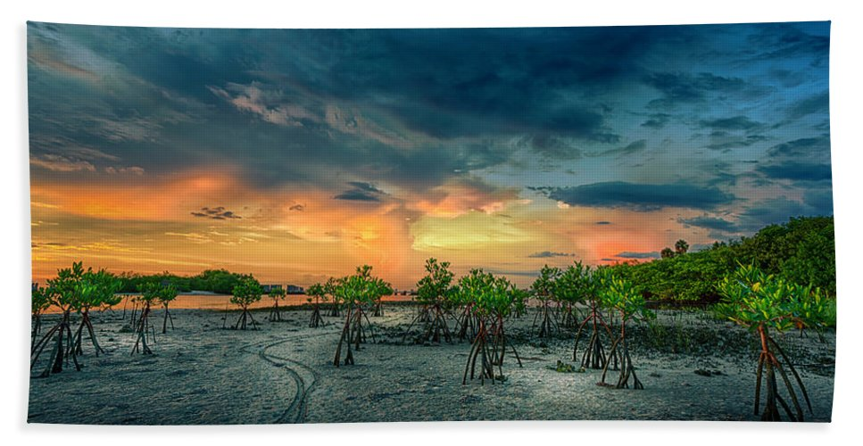 Florida Bath Towel featuring the photograph The Endless Trail by Marvin Spates