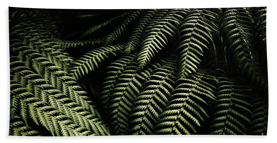 Rainforest Hand Towel featuring the photograph The Exotic Dark Jungle by Jorgo Photography - Wall Art Gallery