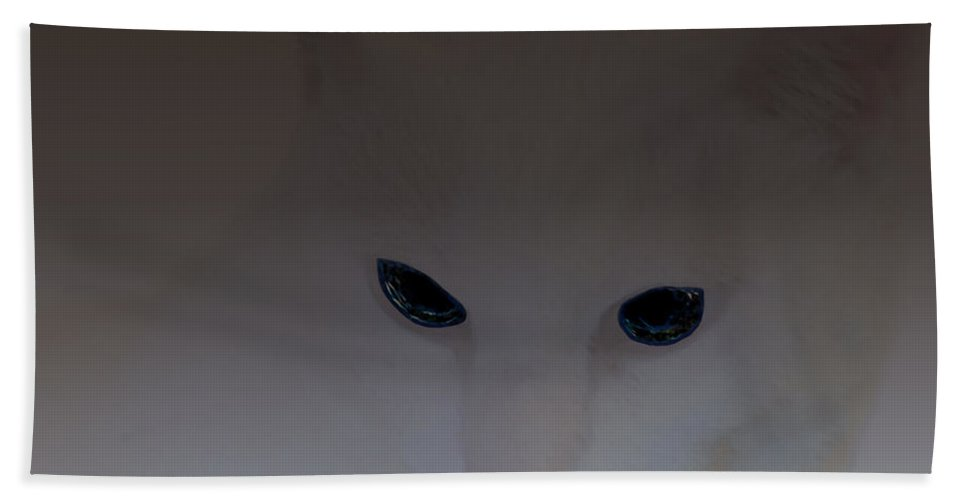 Cat Bath Sheet featuring the digital art The Eyes Have It by Diane Parnell