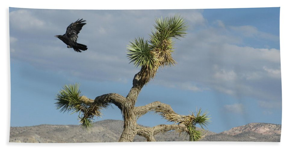 Landscape Hand Towel featuring the photograph The Flight Of Raven. Lucerne Valley. by Ausra Huntington nee Paulauskaite