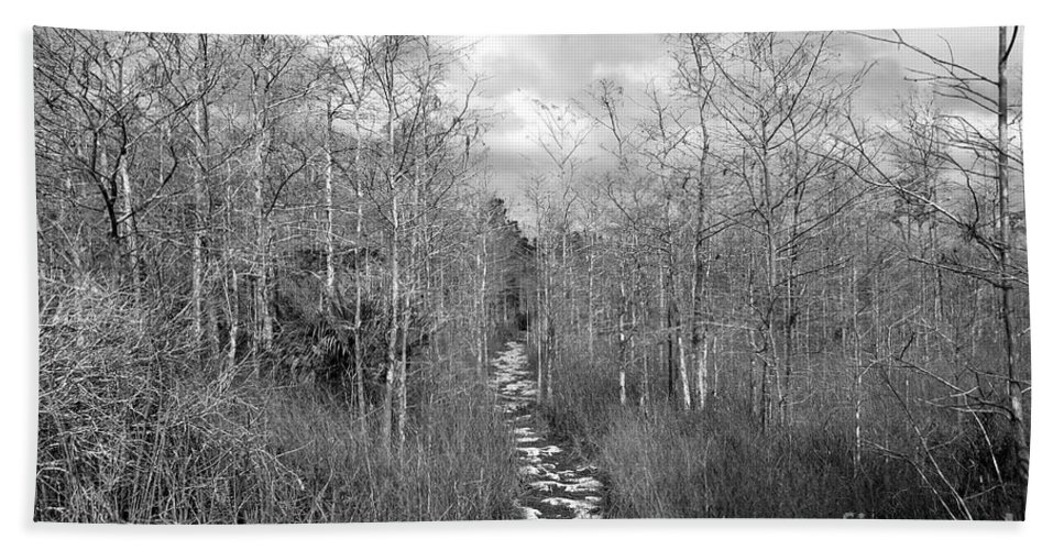 Everglades Hand Towel featuring the photograph The Florida Trail by David Lee Thompson