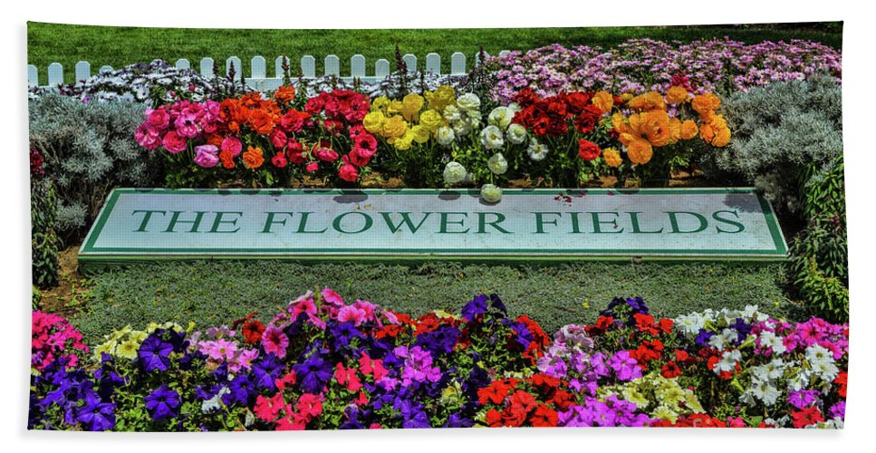 Flowers Bath Sheet featuring the photograph The Flower Field by Tommy Anderson
