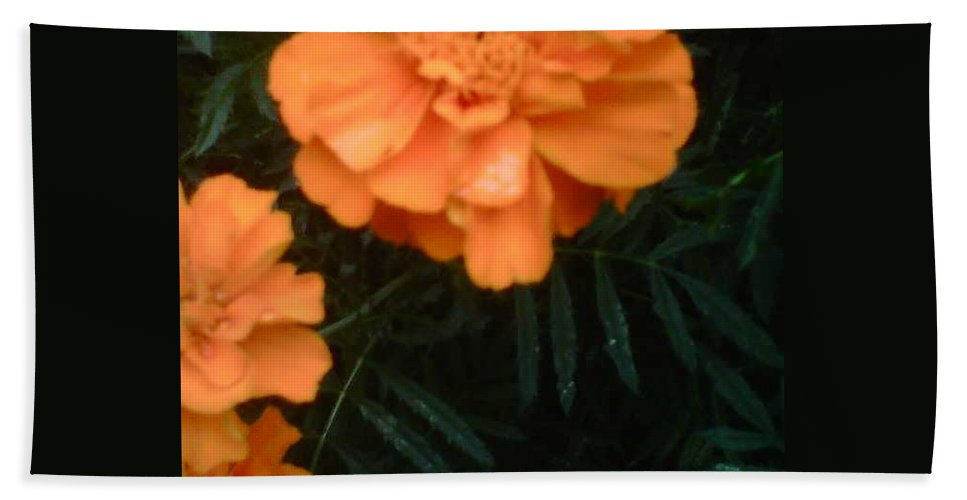 Flower Hand Towel featuring the photograph The Flower Series by Sylvester Wofford