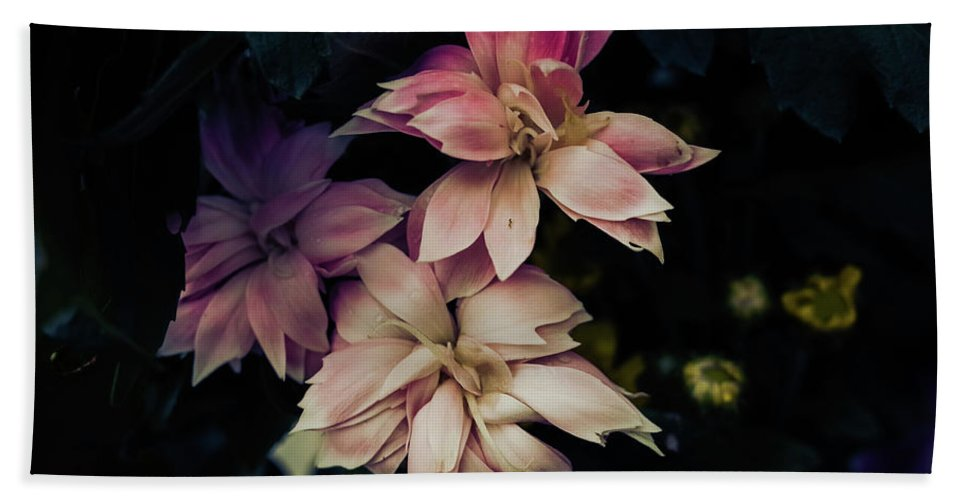 Flowers Pastel Pink Tinted Bath Sheet featuring the photograph The Flowers Of Romance. by Colquhoun Callum