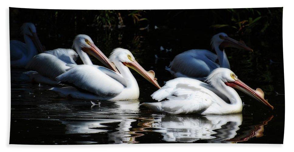 Pelicans Bath Sheet featuring the photograph The Gangs All Here by Saija Lehtonen