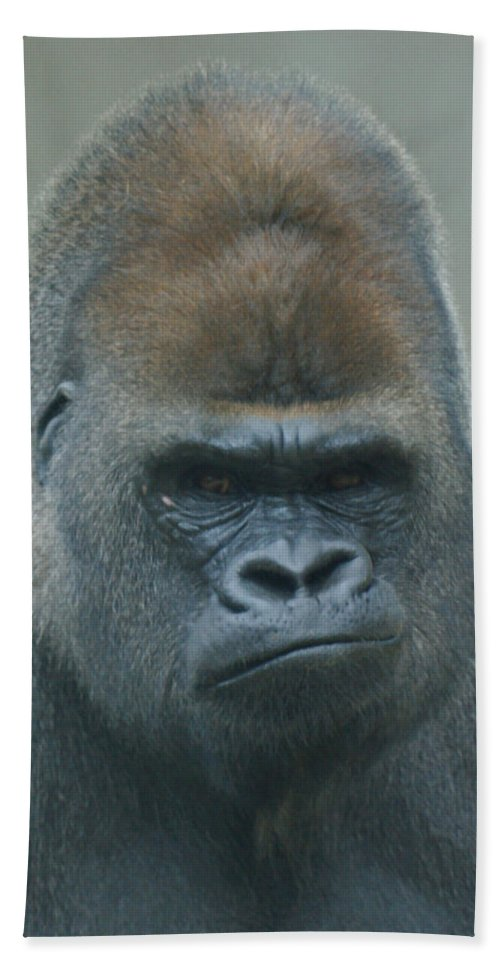 Animals Bath Sheet featuring the photograph The Gorilla 4 by Ernie Echols